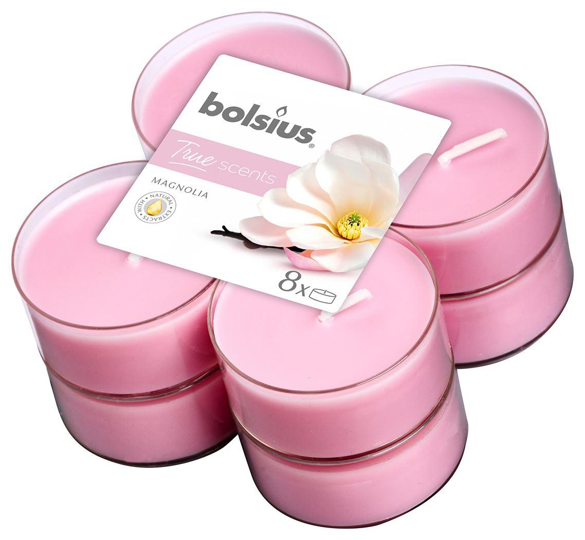 bolsius-maxi-clear-cup-true-scents-magnolia-8sts
