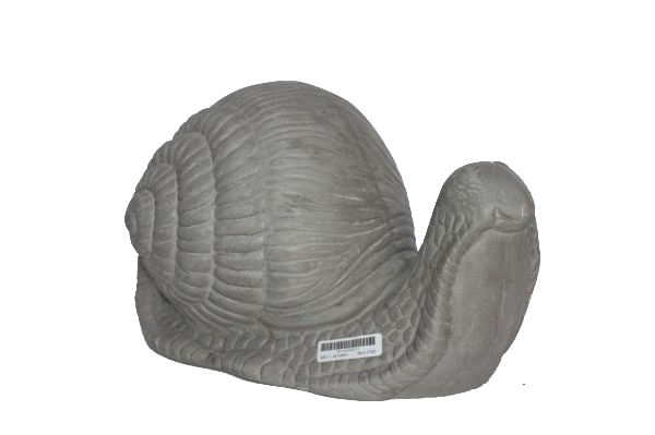 cement-snail-natural