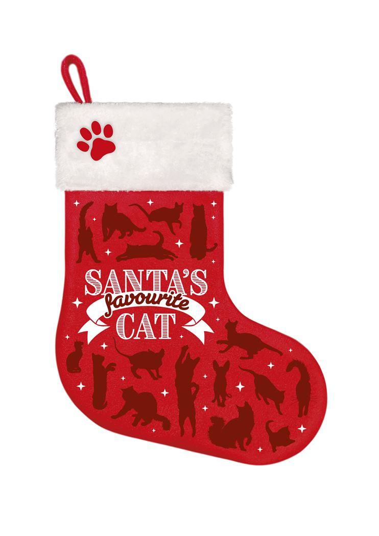 stocking-favourite-cat