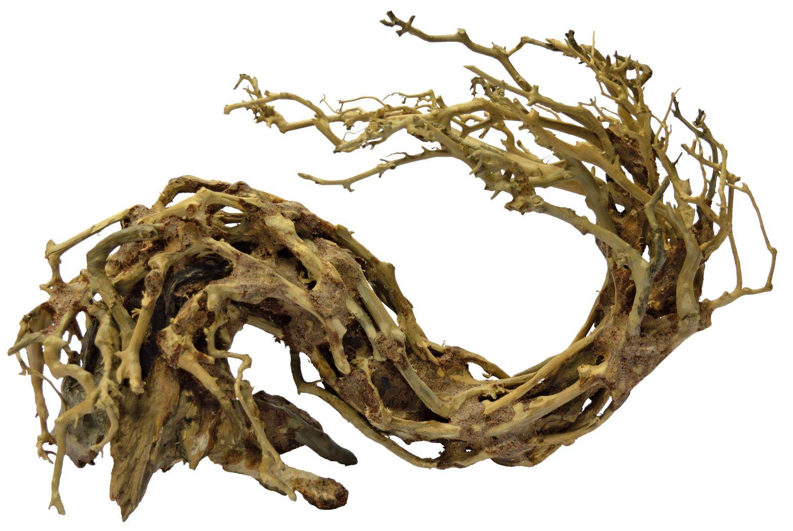superfish-bonsai-wave-large