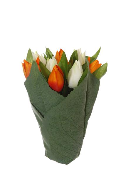 tulip-bundle-in-lvs-pot-x-9-cream-orange