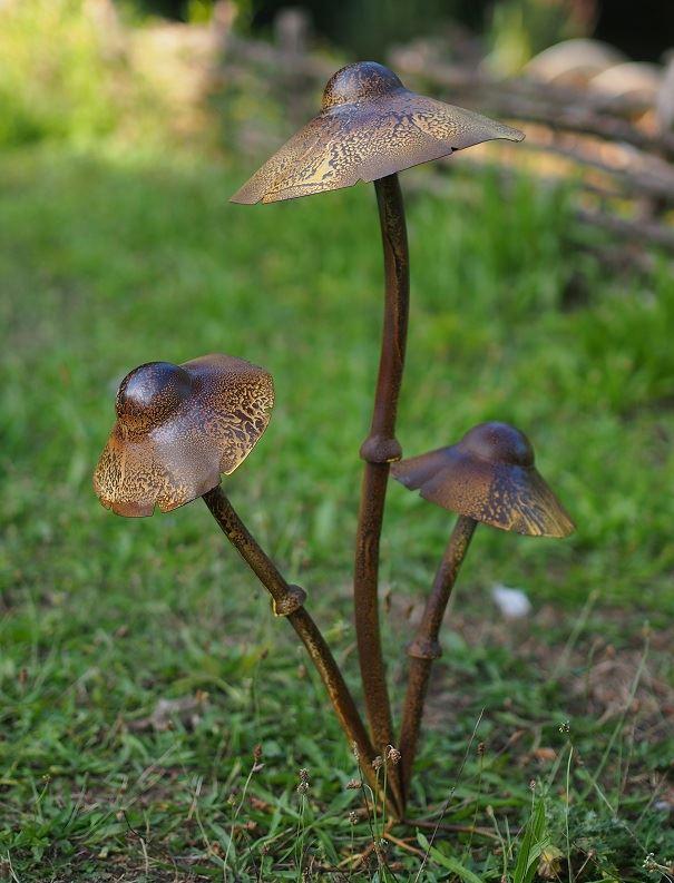 3 paddenstoelen