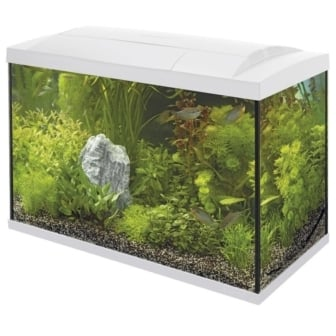 superfish aquarium start 50 led tropical kit wit