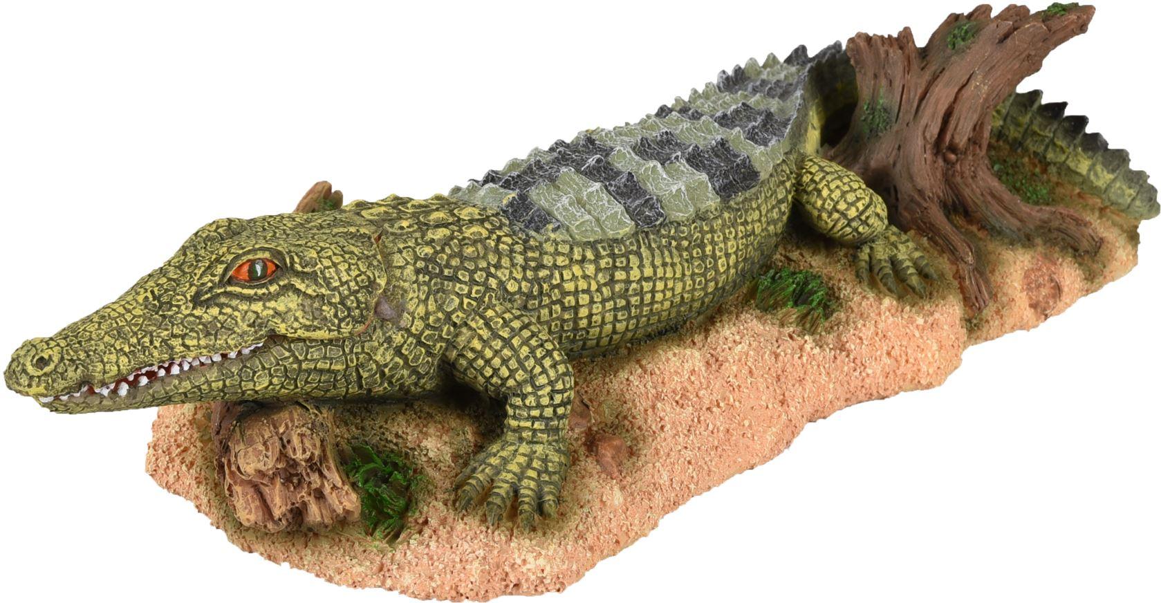 ad fauna krokodil