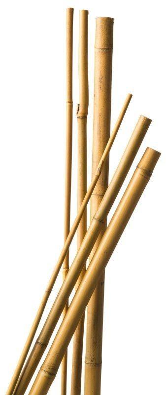 bamboestok 100/120mm