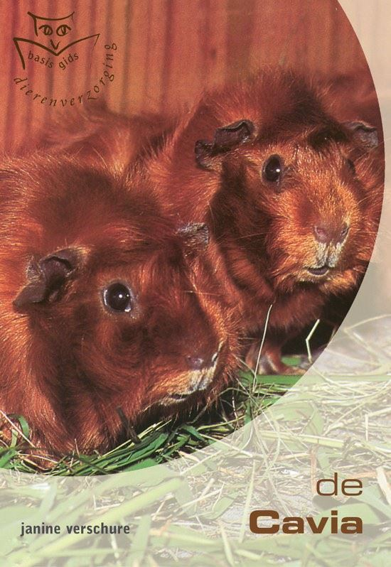 basisgids dierenverzorging: cavia's