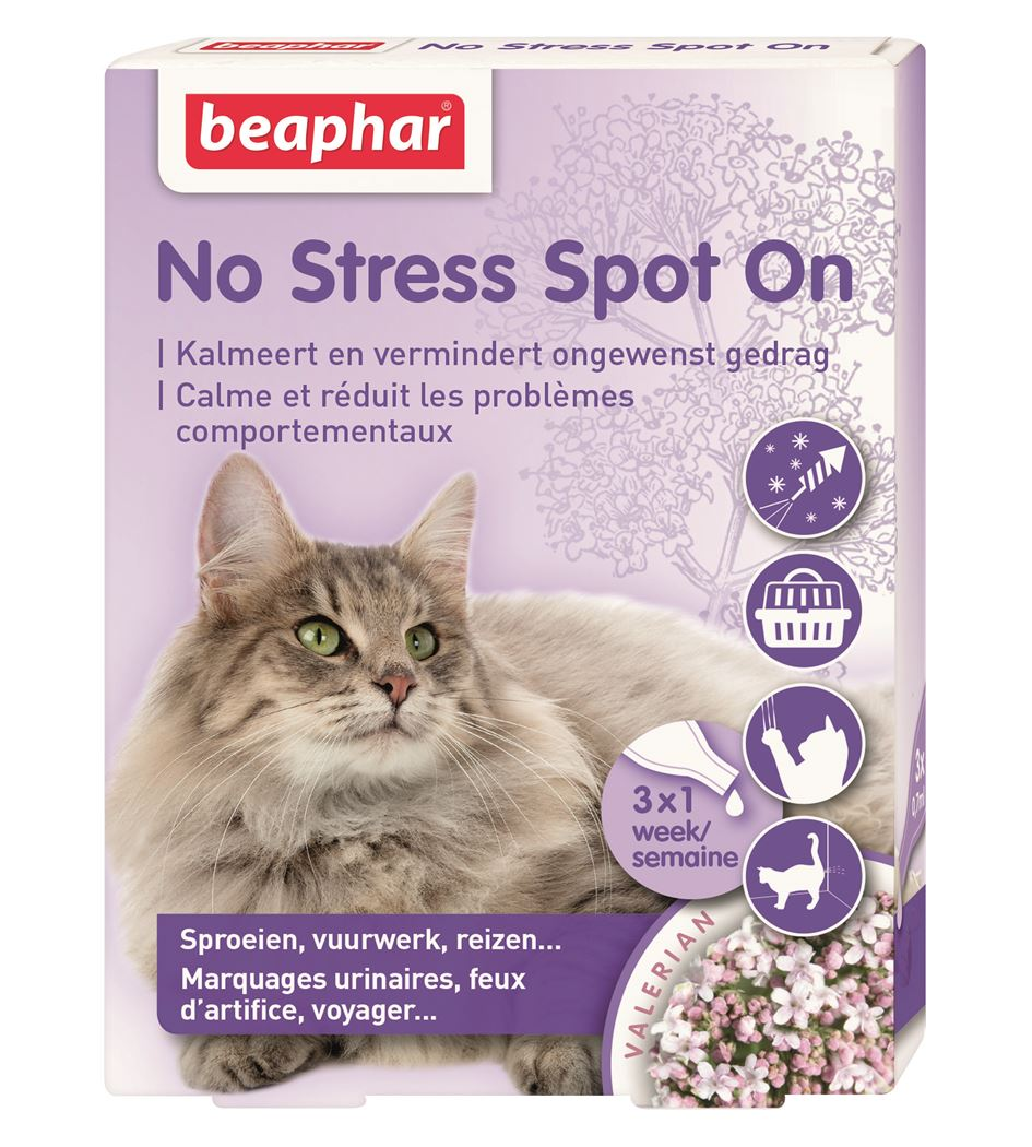 beaphar no stress spot on kat