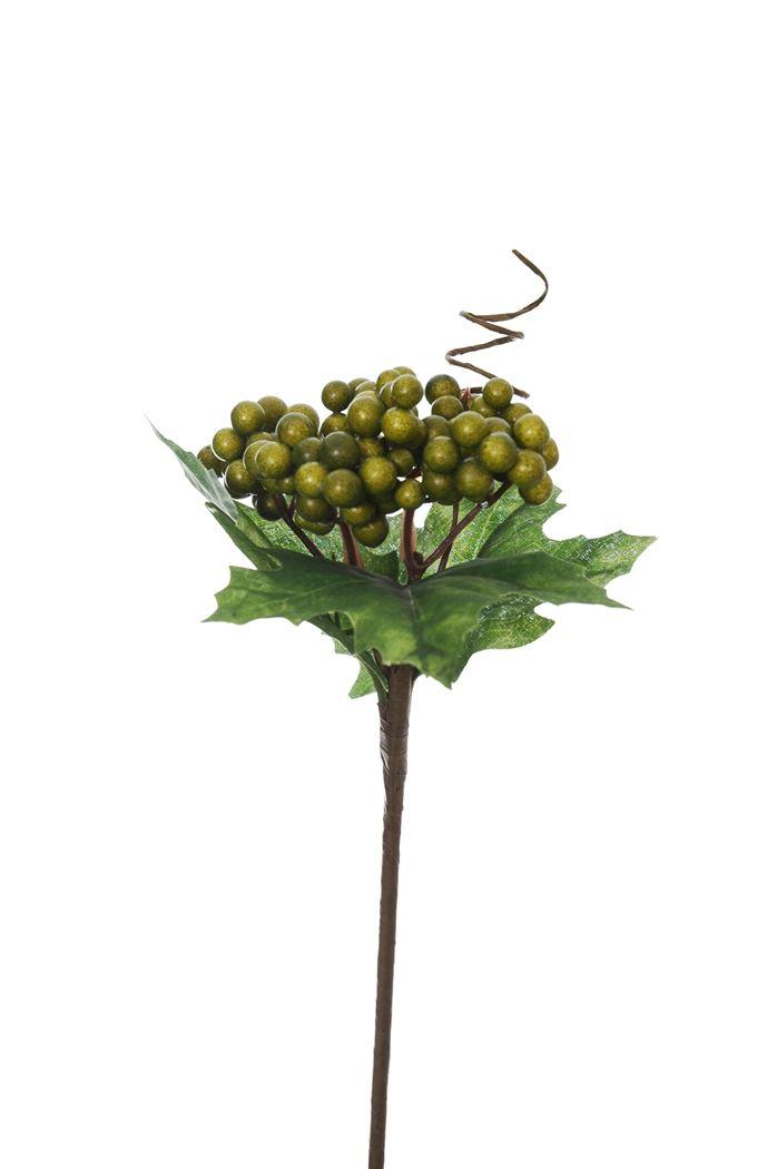 berry w/lvs pick green