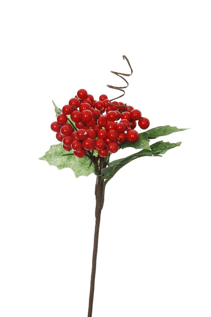berry w/lvs pick red