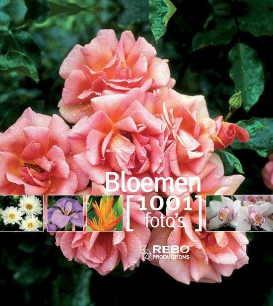 bloemen - 1001 fotoboek