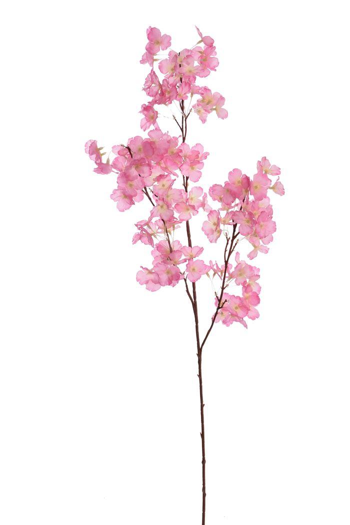 blossom spray x 3 beauty