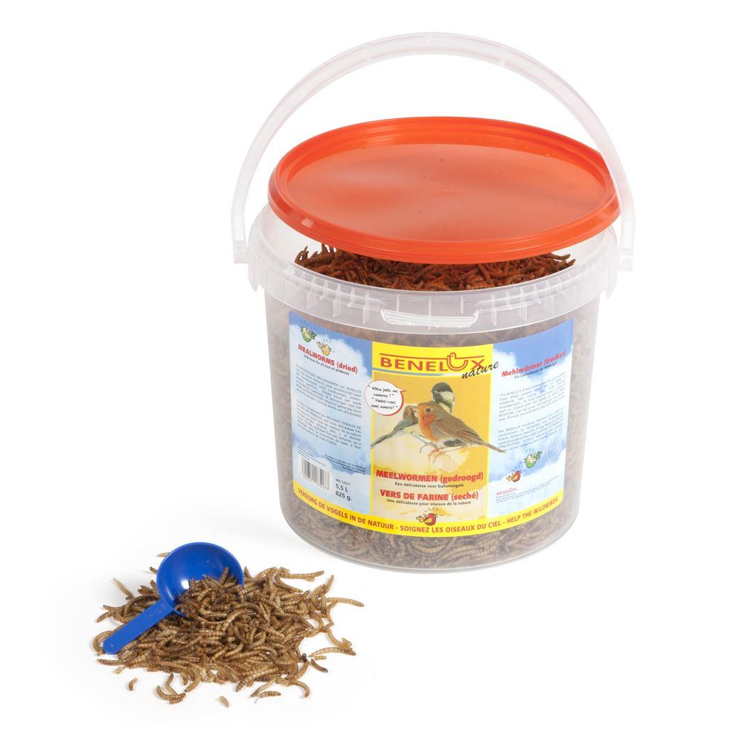 benelux emmer meelwormen voor buitenvogels