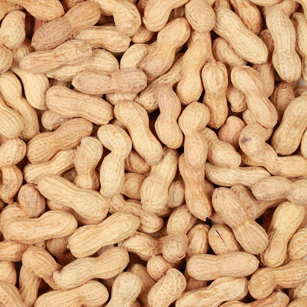 benelux ongepelde noten