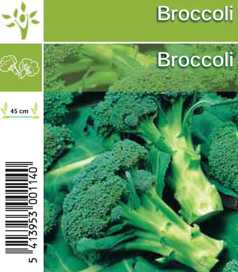 broccoli in setje (6sts)