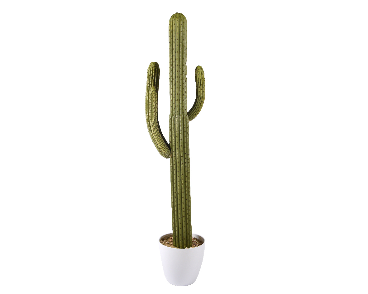 cactus groen plastic xl