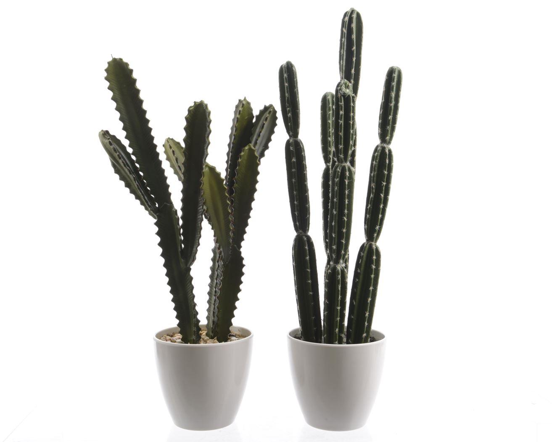 cactus groen plastic pot (2ass.)