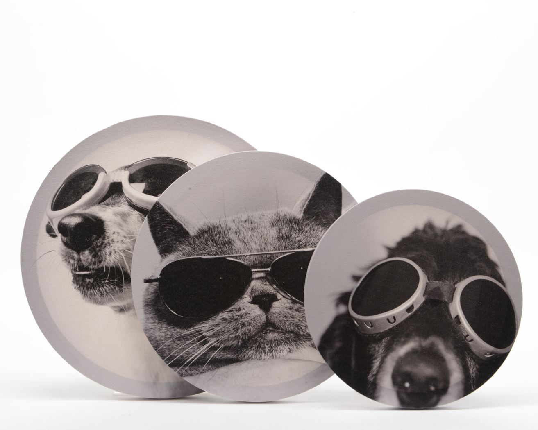canvas schilderij hond zwart/wit (3ass.)
