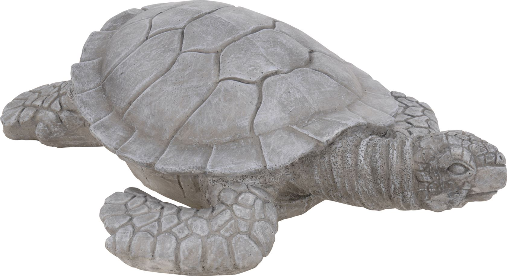 cement schildpad grijs