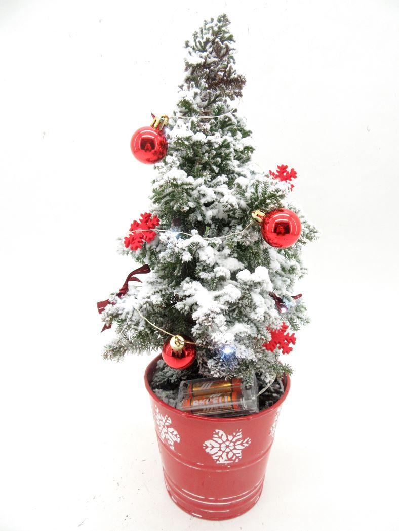 chamaecyparis 'top point' met sneeuw in rood zink met leds