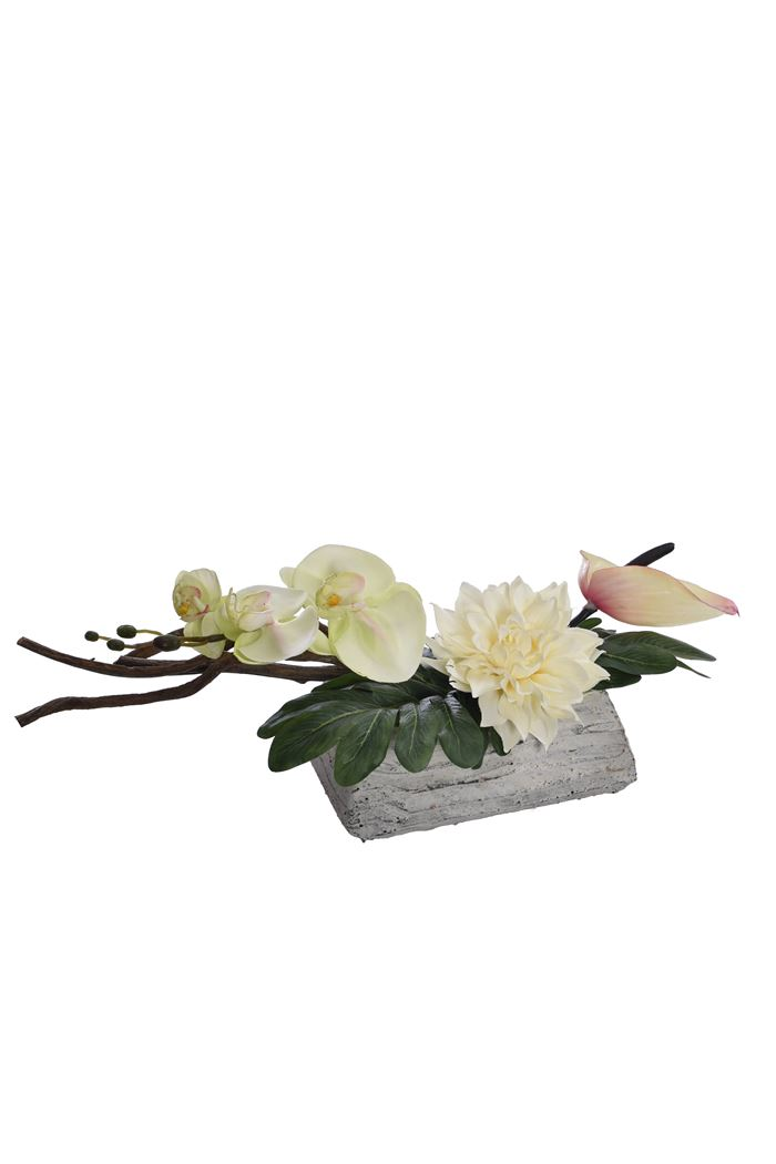 dahlia/orchid/flaming arrangement in pot cream