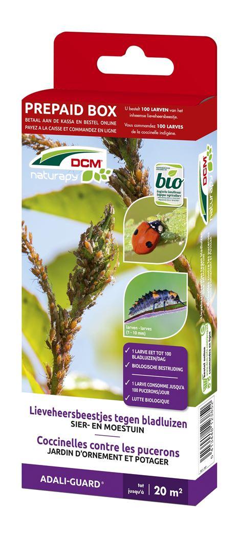 dcm naturapy® adali-guard - lieverheersbeestjes tegen de bladluizen in de sier- en groentetuin (prepaid box)