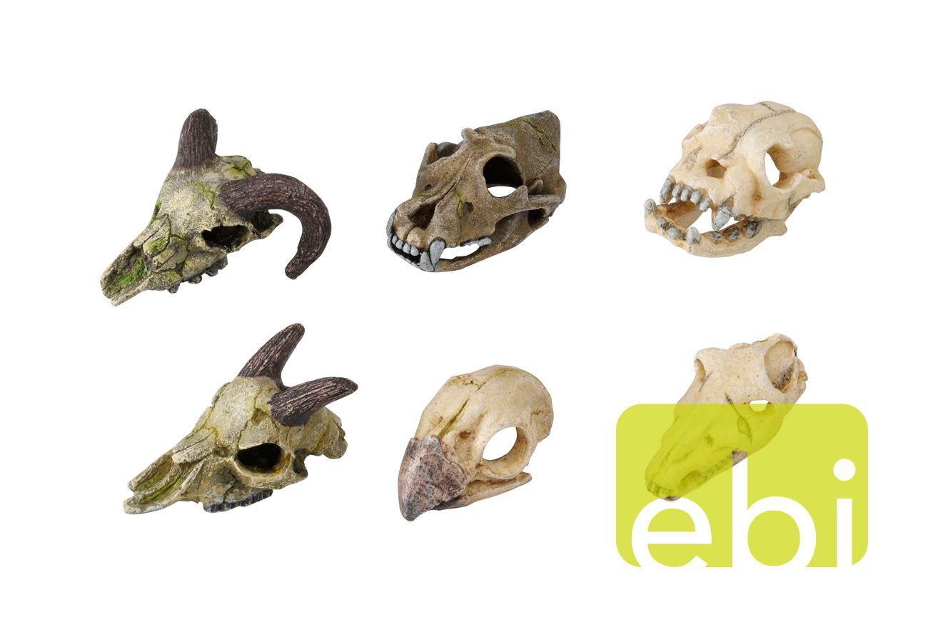 decor skull mini