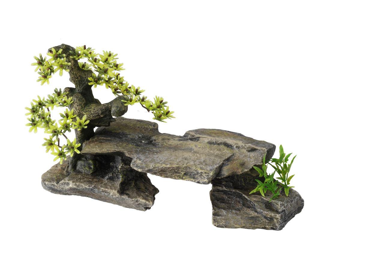 decor steen gr. bonsai