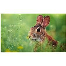 deurmat konijn