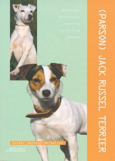dierenverzorging: jack russell terrier