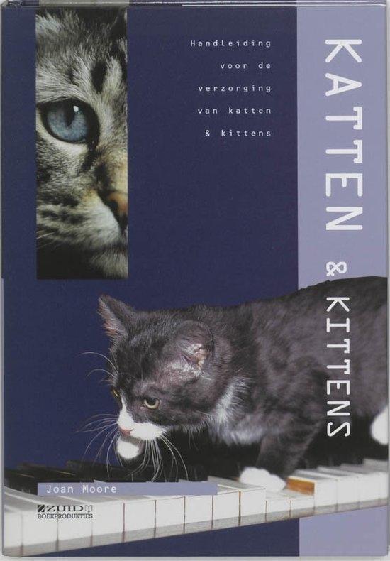 dierenverzorging: katten