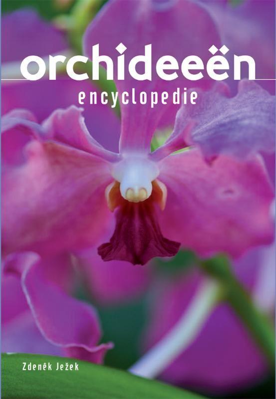 encyclopedie: orchideën