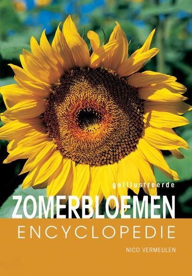 encyclopedie: zomerbloemen