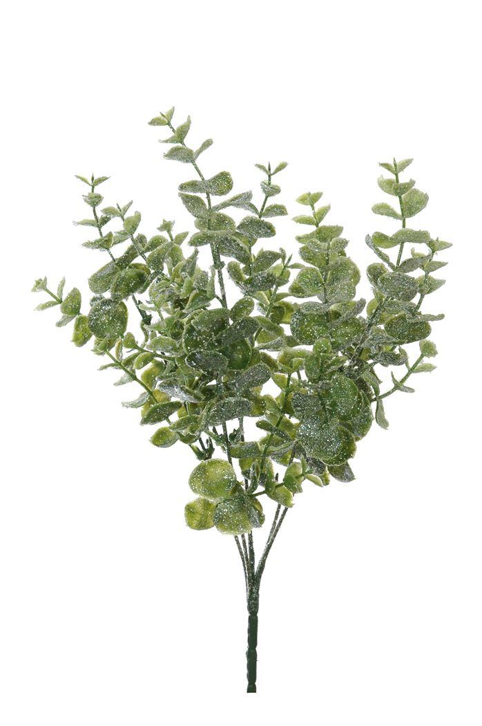eucalyptus bush x 5 w/glitter ice