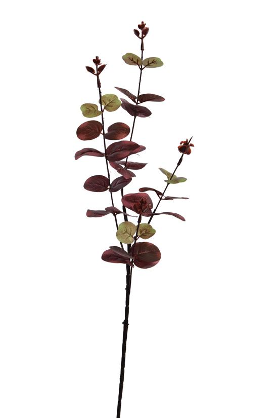 eucalyptus x 4 burgundy
