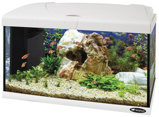 ferplast aquarium capri 60 led wit
