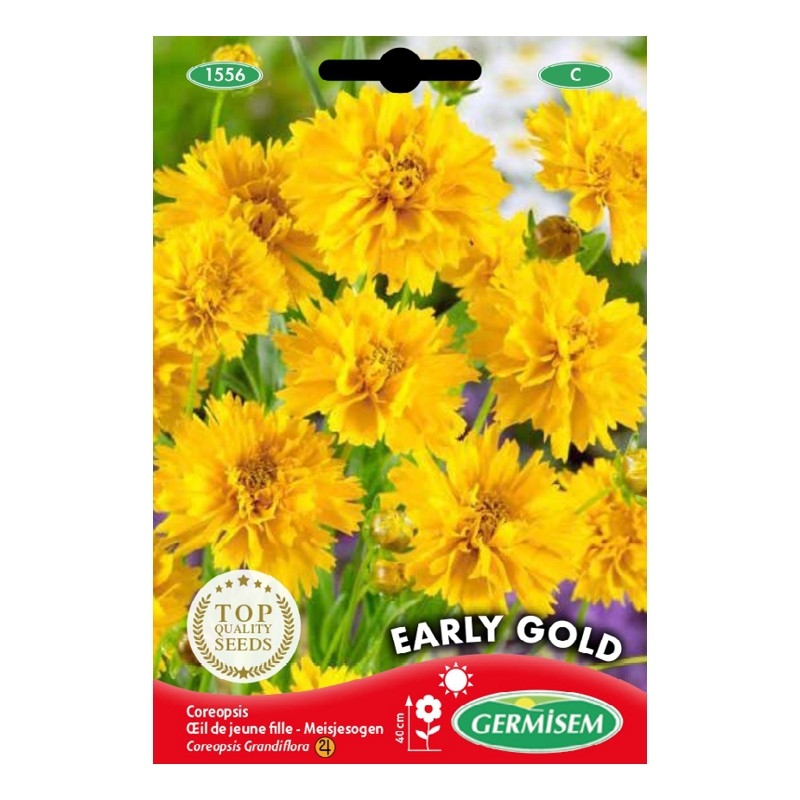 germisem coreopsis grandiflora early gold