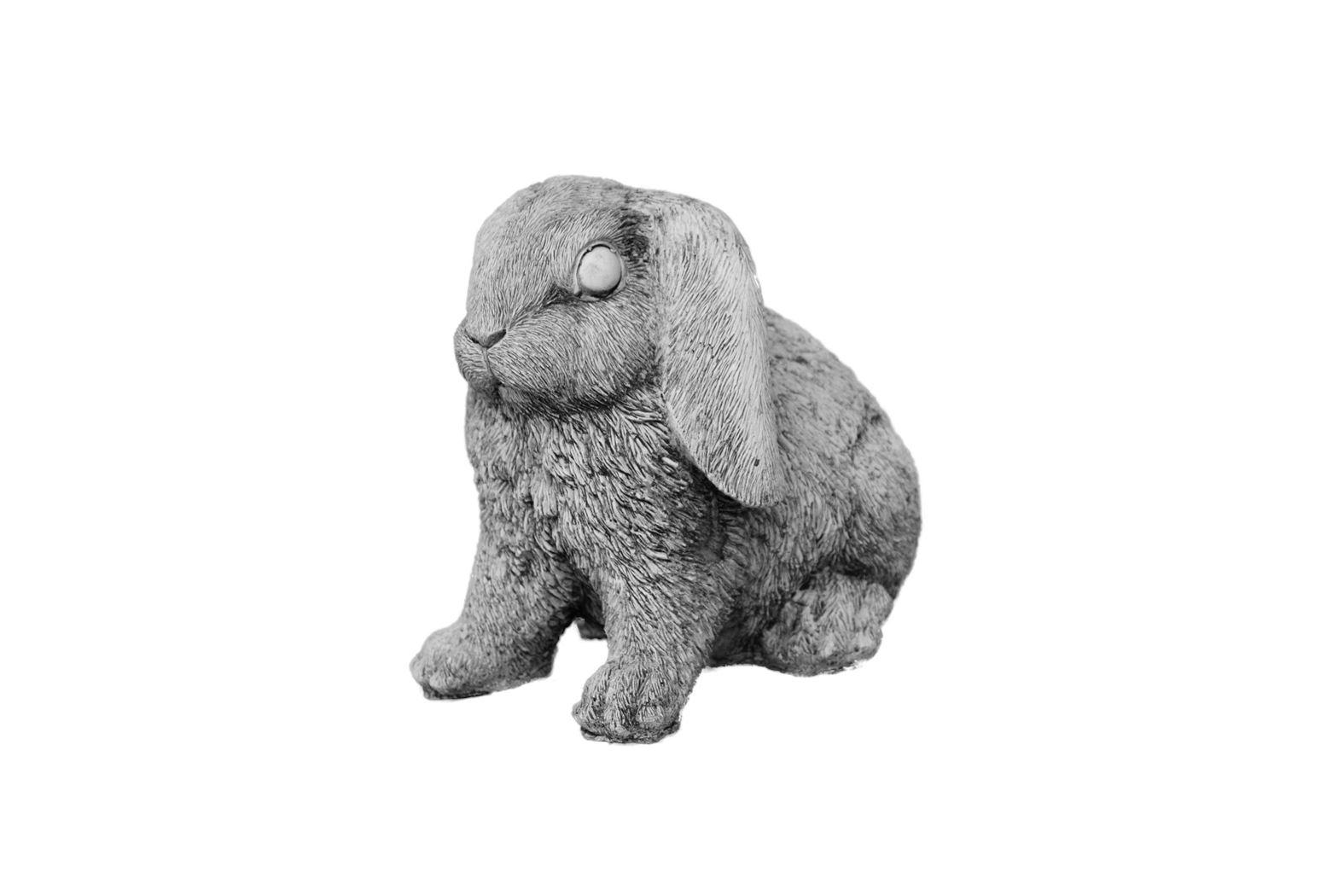 hangoor konijn