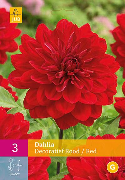 jub dahlia decoratief rood i (3sts)