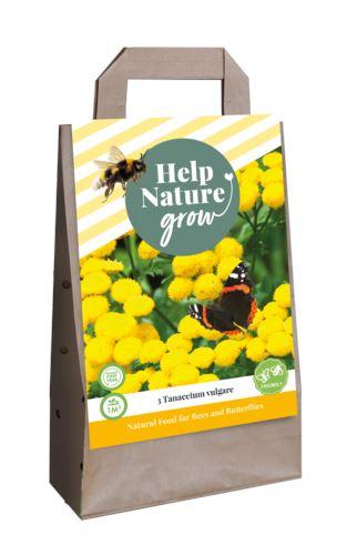 jub tas help nature grow - tanacetum vulgare i