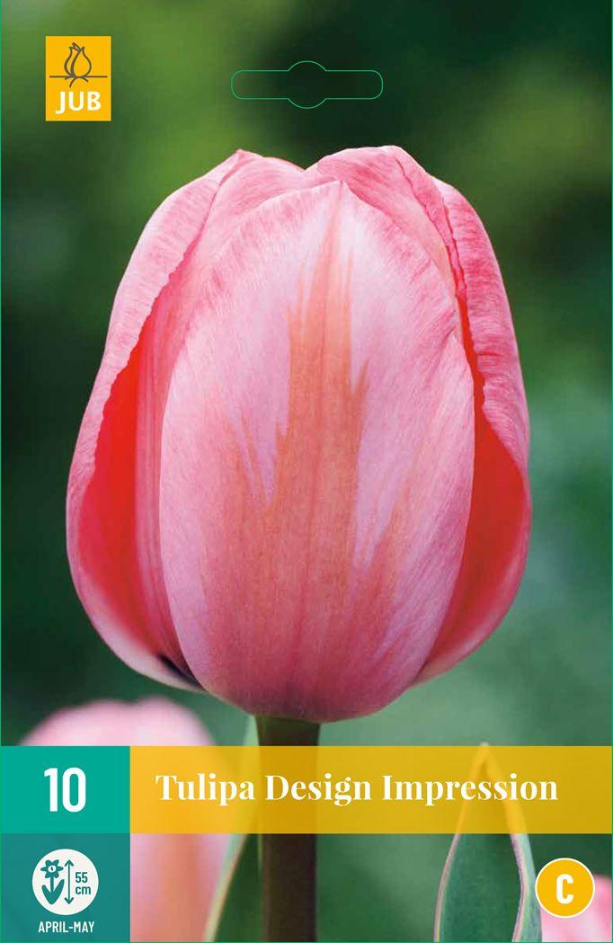 jub tulipa design impression (10sts)