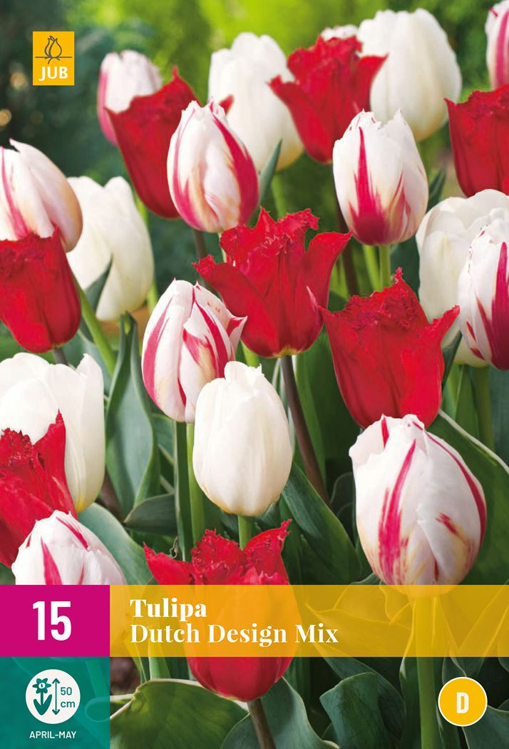 jub tulipa dutch design mix (15sts)