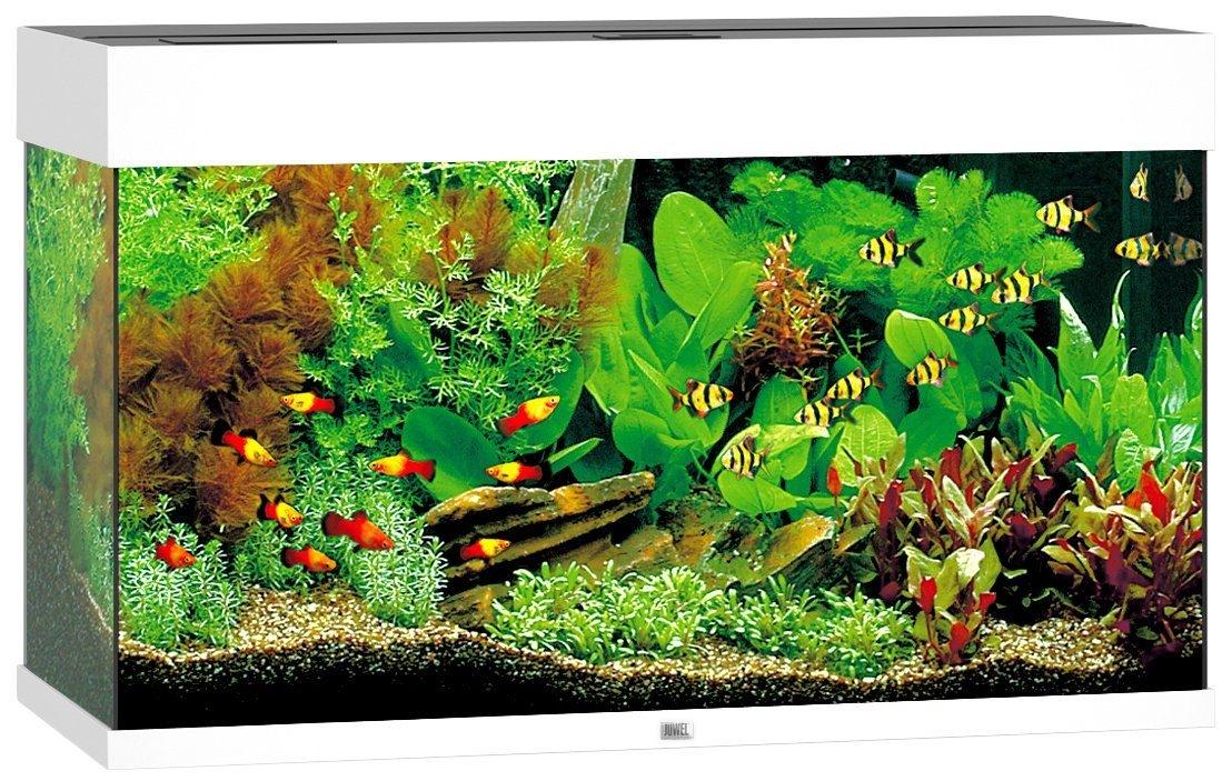 juwel aquarium rio 125 led wit