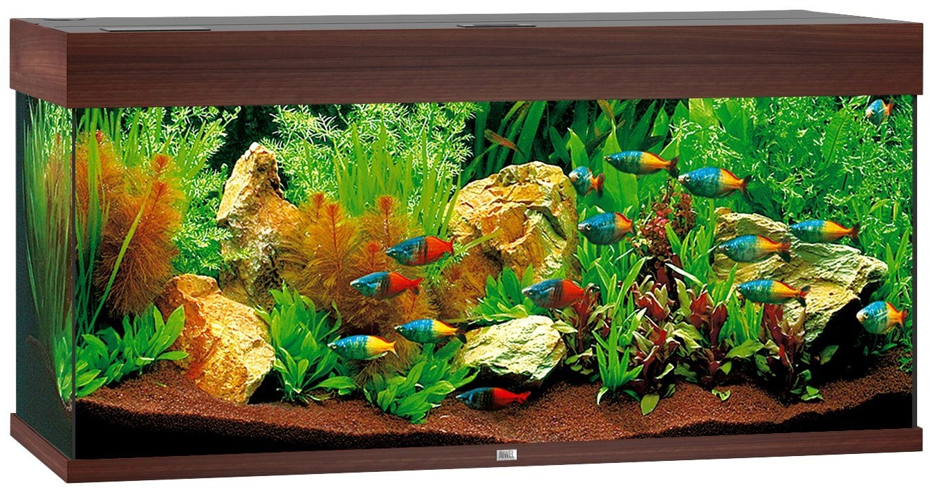 juwel aquarium rio 180 led bruin