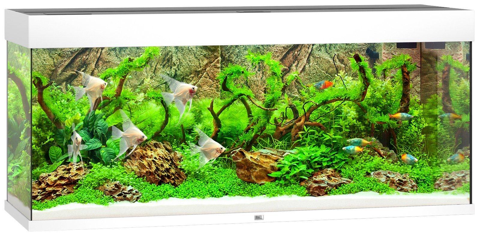 juwel aquarium rio 240 led wit