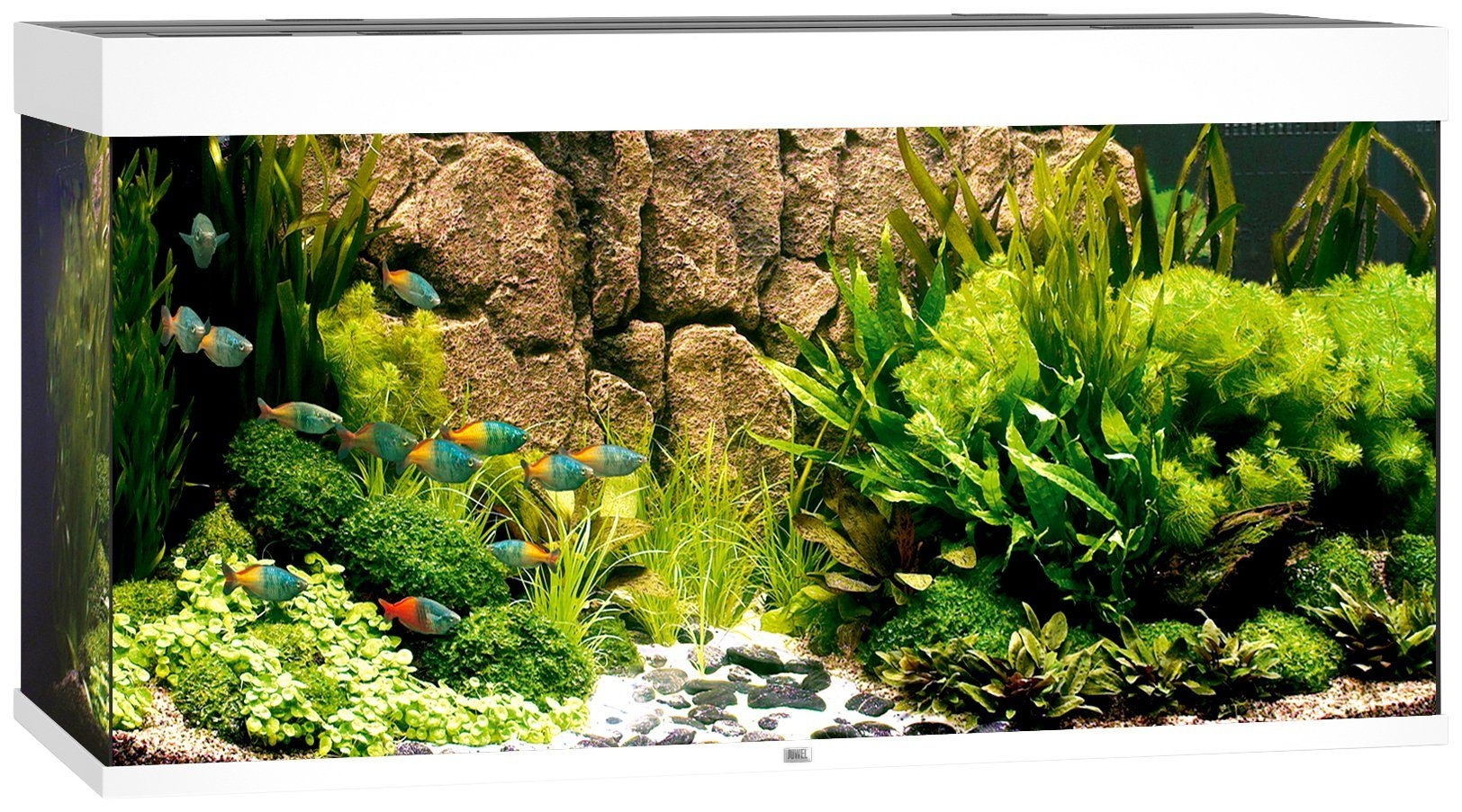 juwel aquarium rio 350 led wit