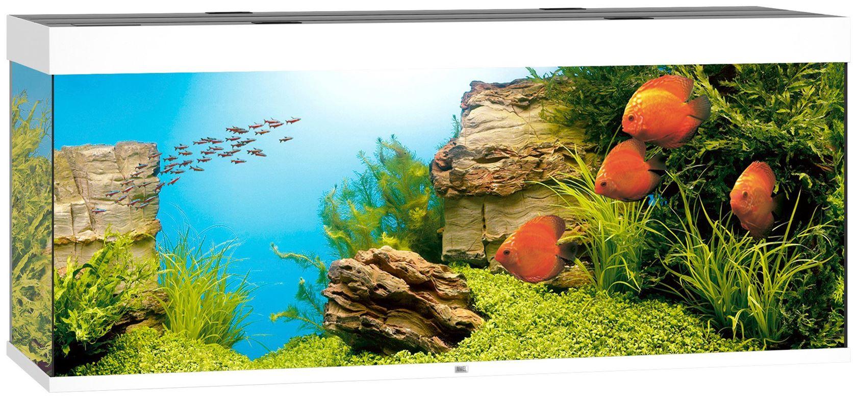 juwel aquarium rio 450 led wit