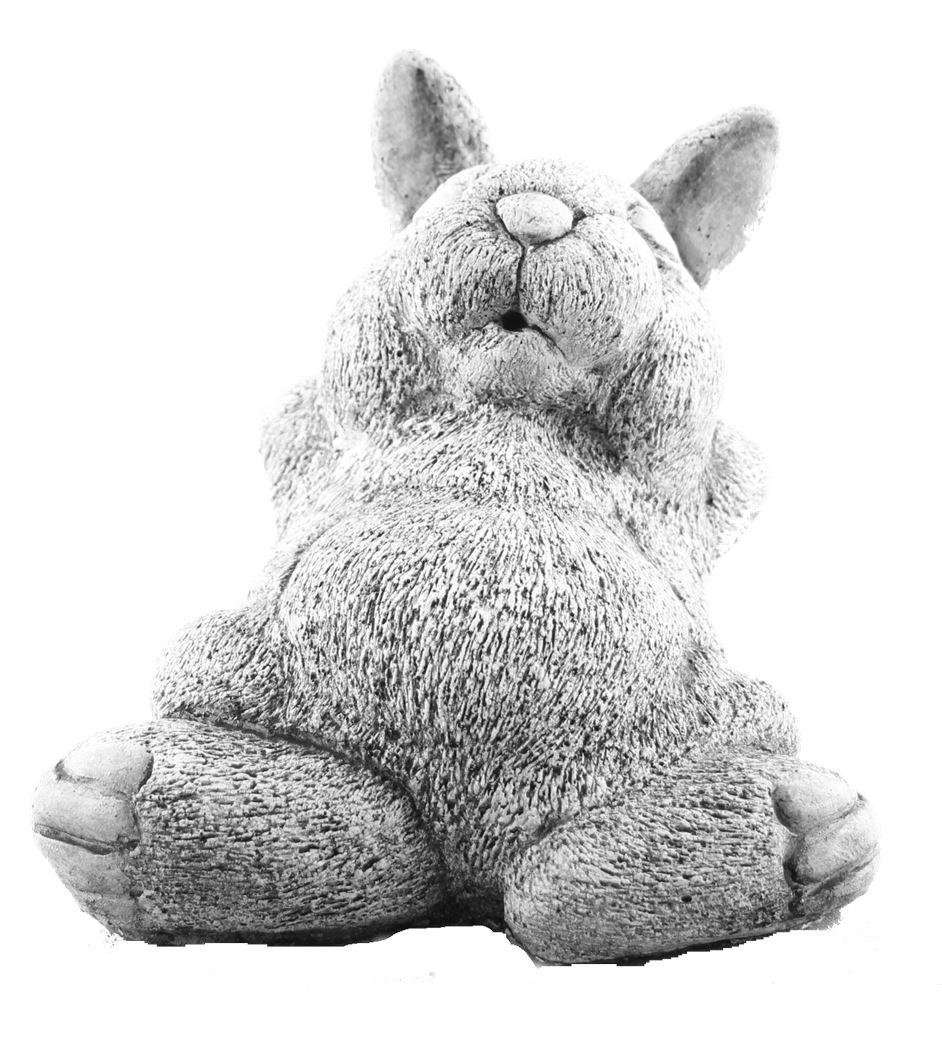 dbg konijn op rug