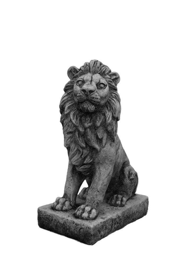 dbg leeuw links