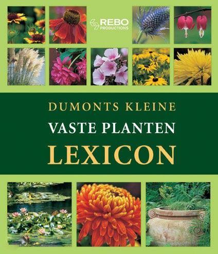 lexicon: vaste planten