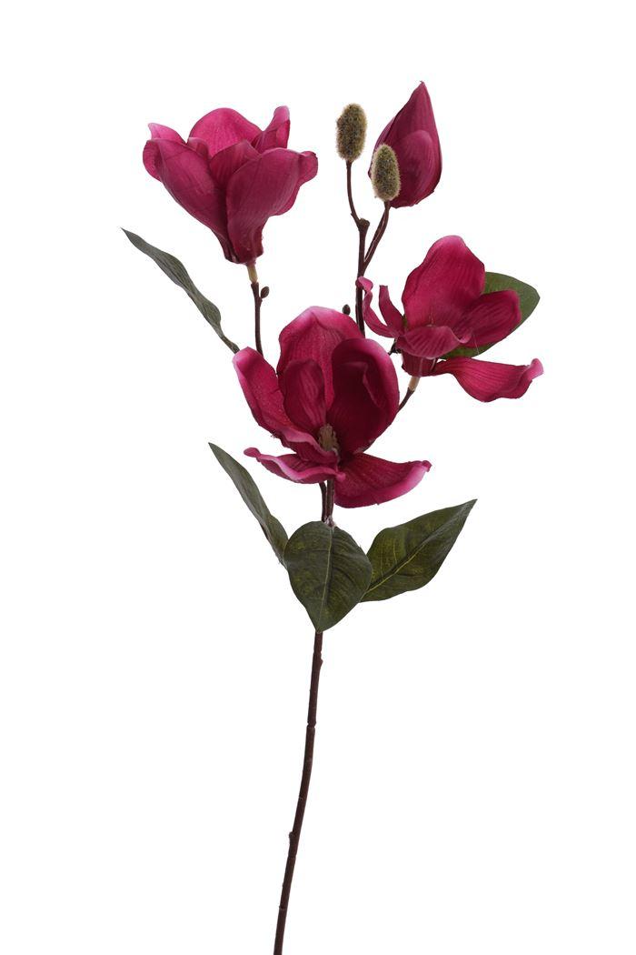 magnolia spray x 4 beauty